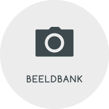 Lizzit Beeldbank